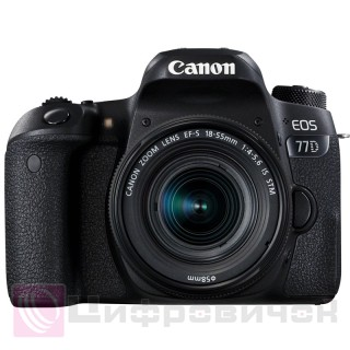 Canon EOS 77D Kit (18-55 IS STM)