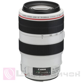 Canon EF 70-300mm f 4.0-5.6L IS USM