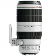 Canon EF 100-400mm f 4.5-5.6L II IS USM