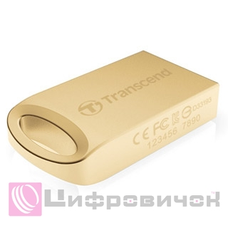 Transcend JetFlash 510 8 GB Gold (TS8GJF510G)