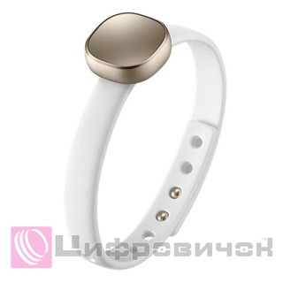 Samsung EI-AN920 (Smart Charm) Gold
